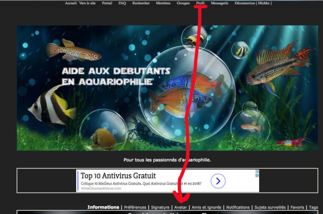 Aquarium pour un novice, eau trouble Captur81