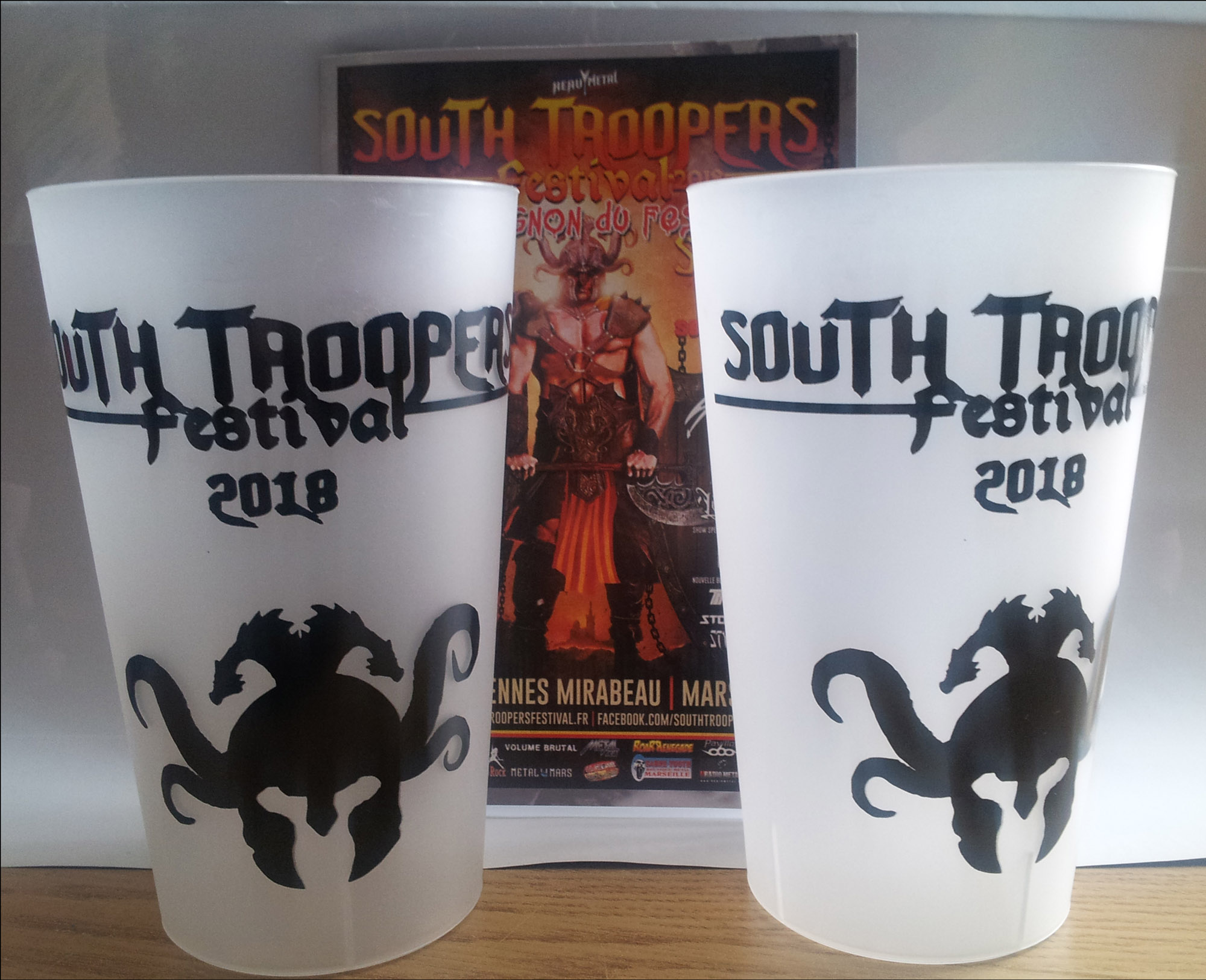 South Troopers Festival 2018 à Marseille Gobele10