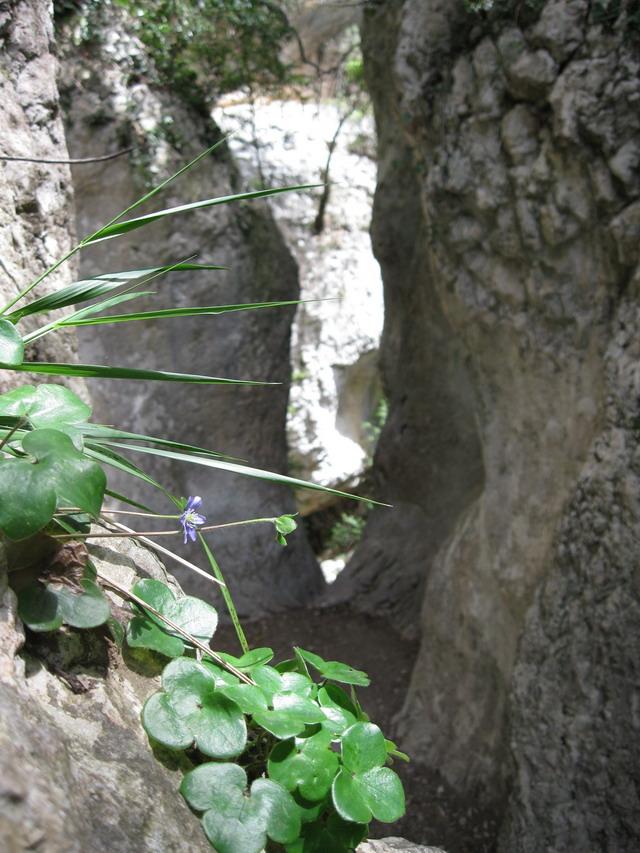 W.E du 8 Mai en Sierra de guara 100_4889