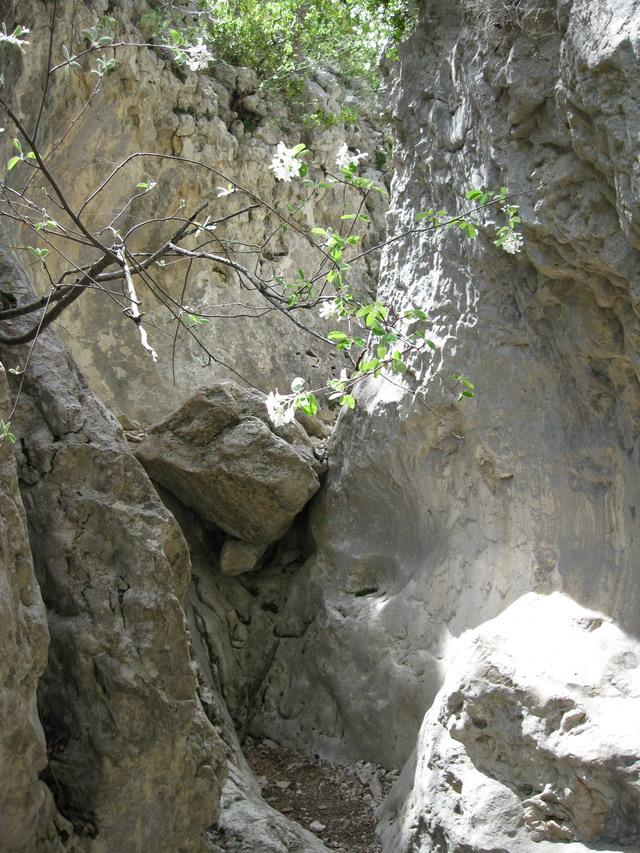 W.E du 8 Mai en Sierra de guara 100_4893
