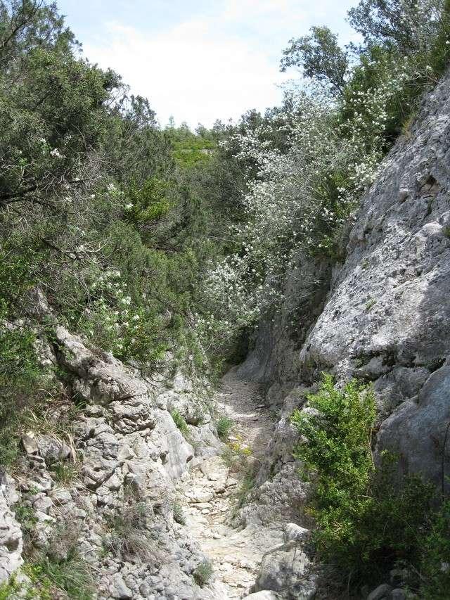 W.E du 8 Mai en Sierra de guara 100_4896
