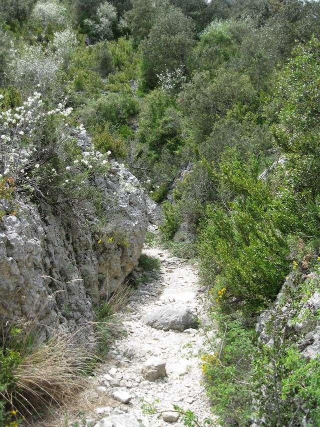 W.E du 8 Mai en Sierra de guara 100_4897