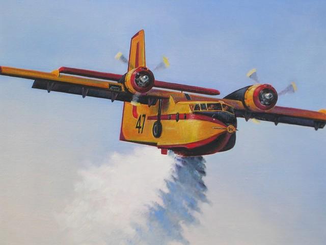 Canadair Cl-215 6can0010