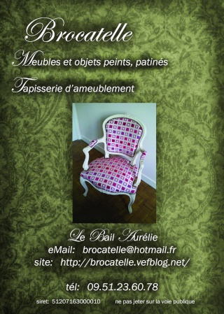 mes autres passions - Page 5 Flybro10