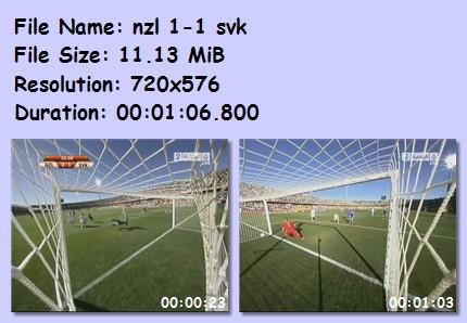 ميديا وأهداف كأس العالم 2010 345610