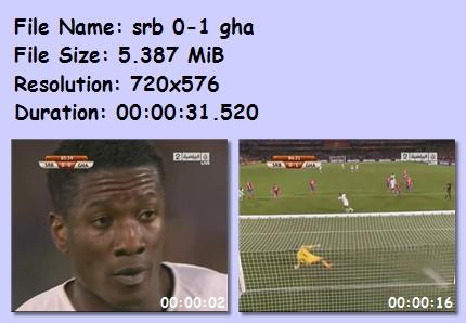 ميديا وأهداف كأس العالم 2010 5411