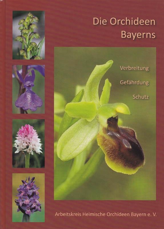Die orchideen Bayerns Bayern10