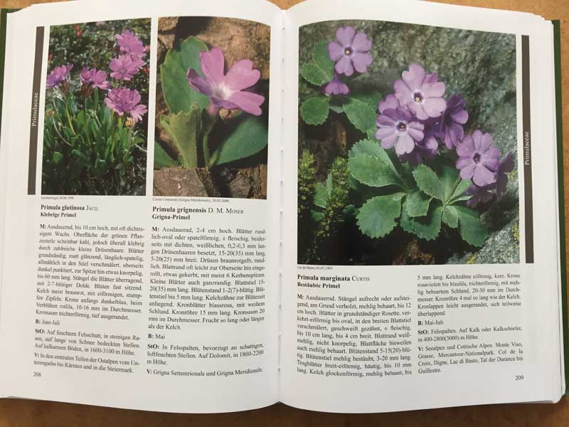 Endemische Alpenpflanzen Livre10
