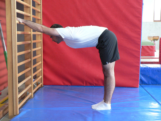Gymnastique aux agrés (et accessoirement musculation/exercices poids du corps + souplesse) Image110