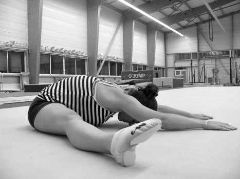 Gymnastique aux agrés (et accessoirement musculation/exercices poids du corps + souplesse) Ycrase11