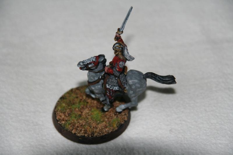 La protection du ridermark. Img_9415