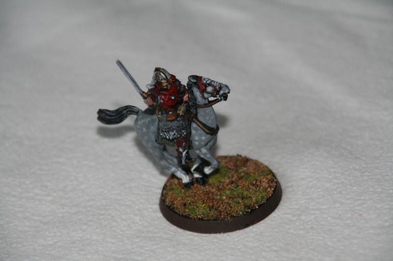 La protection du ridermark. Img_9416