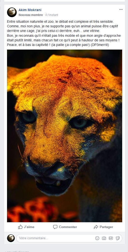 Discussion Ethique sur la photographie d'animaux Captur12