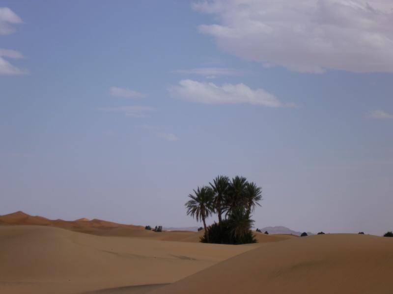 Retour d'un raid au Maroc en autonomie P1000313