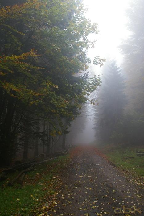Balade dans le brouillard, sur un versant du champ du feu Imgp2515