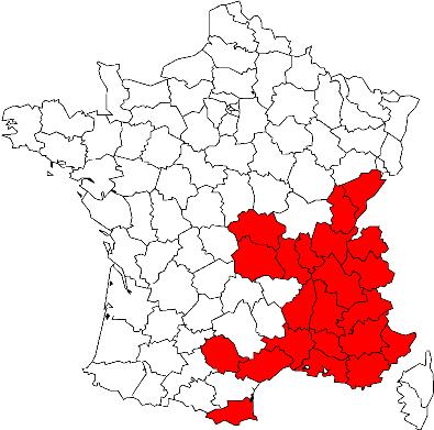 Epipactis rhodanensis ( Epipactis du Rhône ) 13u7tx10