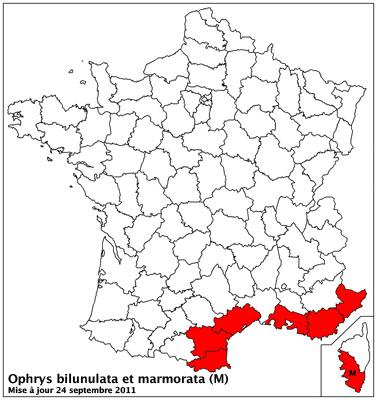 Ophrys marmorata / bilunulata / subfusca Carto_12