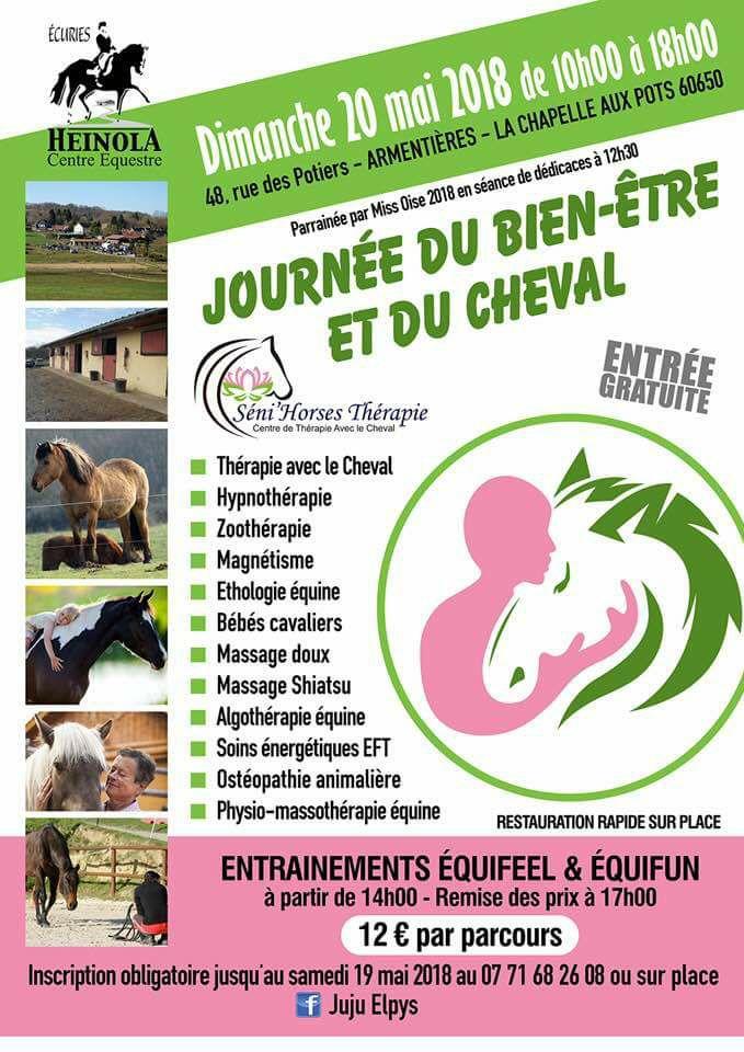 Journée du bien-être et du cheval 32542311