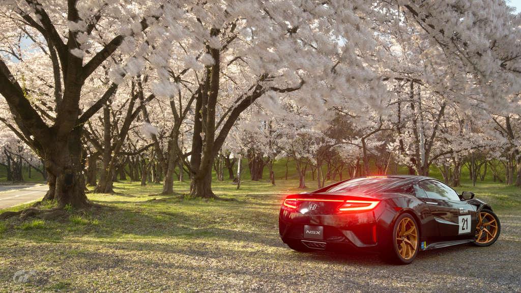 Gran Turismo (sport et les autres aussi) 20180213