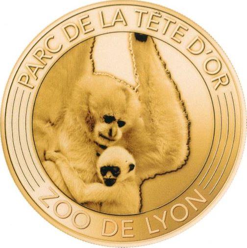 Lyon (69000) Gibbon10