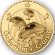 Le Croisic (44490) Ocyari10