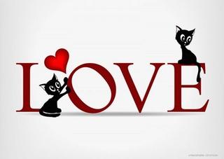 Dimanche 14 février Amour14