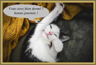 Vendredi 14 mai Bonjou61