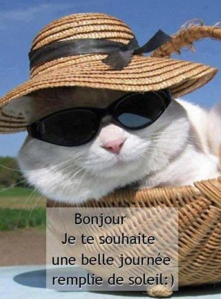 Lundi 4 mai Bonjou75
