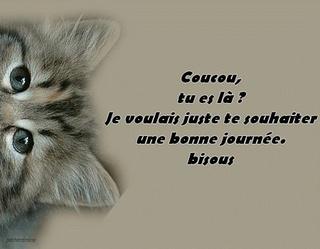 Mercredi 17 octobre Coucou17