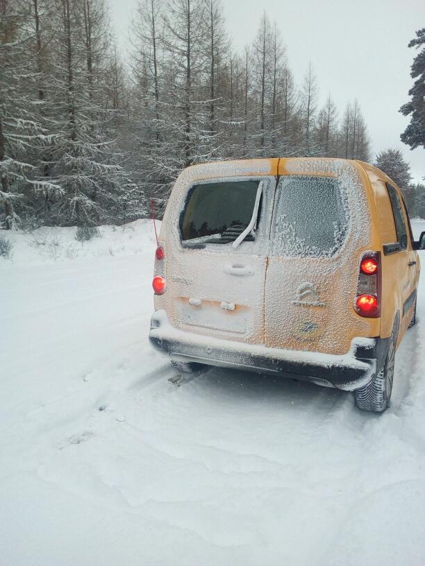 qui est sous la neige  Mms_2010