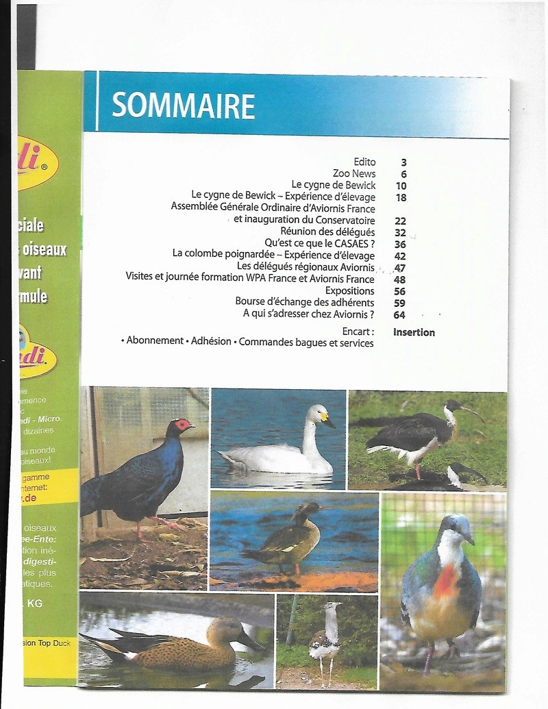 AVIORNIS FRANCE. - Page 5 Avio_d10