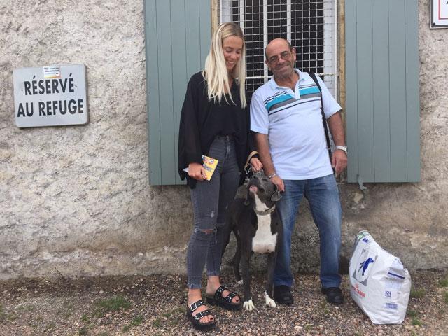 PATO (Retriever croisé Cane Corso) Adopt113