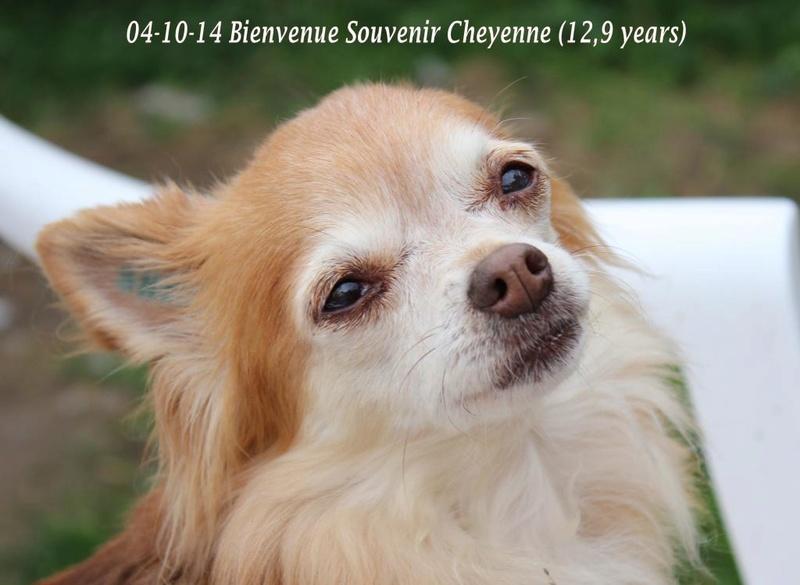 Soeurettes Bruxelle & Bienvenue  15 ans - Page 26 14-10-10
