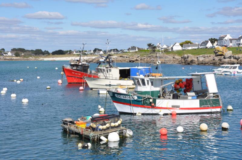 [VIE DES PORTS] Quelques bateaux de pêche (sur nos côtes Françaises) - Page 38 2015_p16