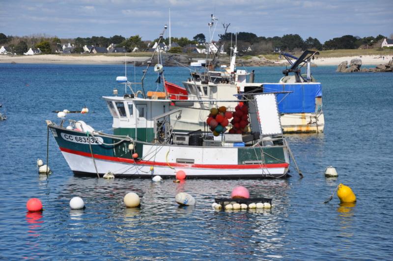 [VIE DES PORTS] Quelques bateaux de pêche (sur nos côtes Françaises) - Page 38 2015_p17