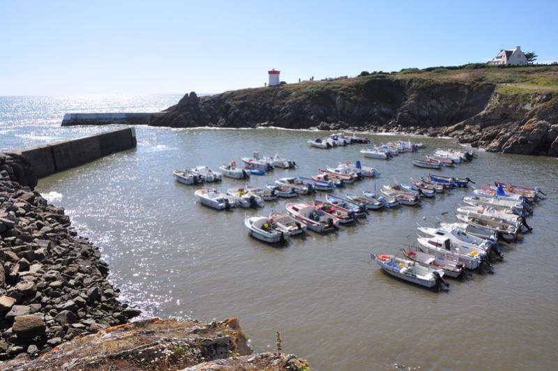 [VIE DES PORTS] Quelques bateaux de pêche (sur nos côtes Françaises) - Page 36 42510
