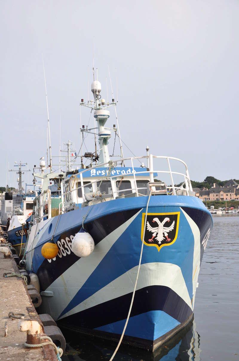 [VIE DES PORTS] Quelques bateaux de pêche (sur nos côtes Françaises) - Page 37 56511