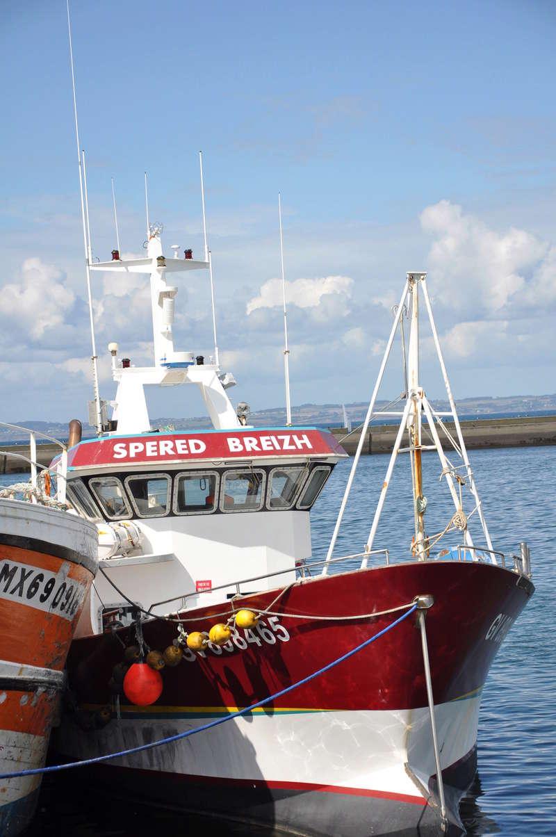 [VIE DES PORTS] Quelques bateaux de pêche (sur nos côtes Françaises) - Page 37 90610