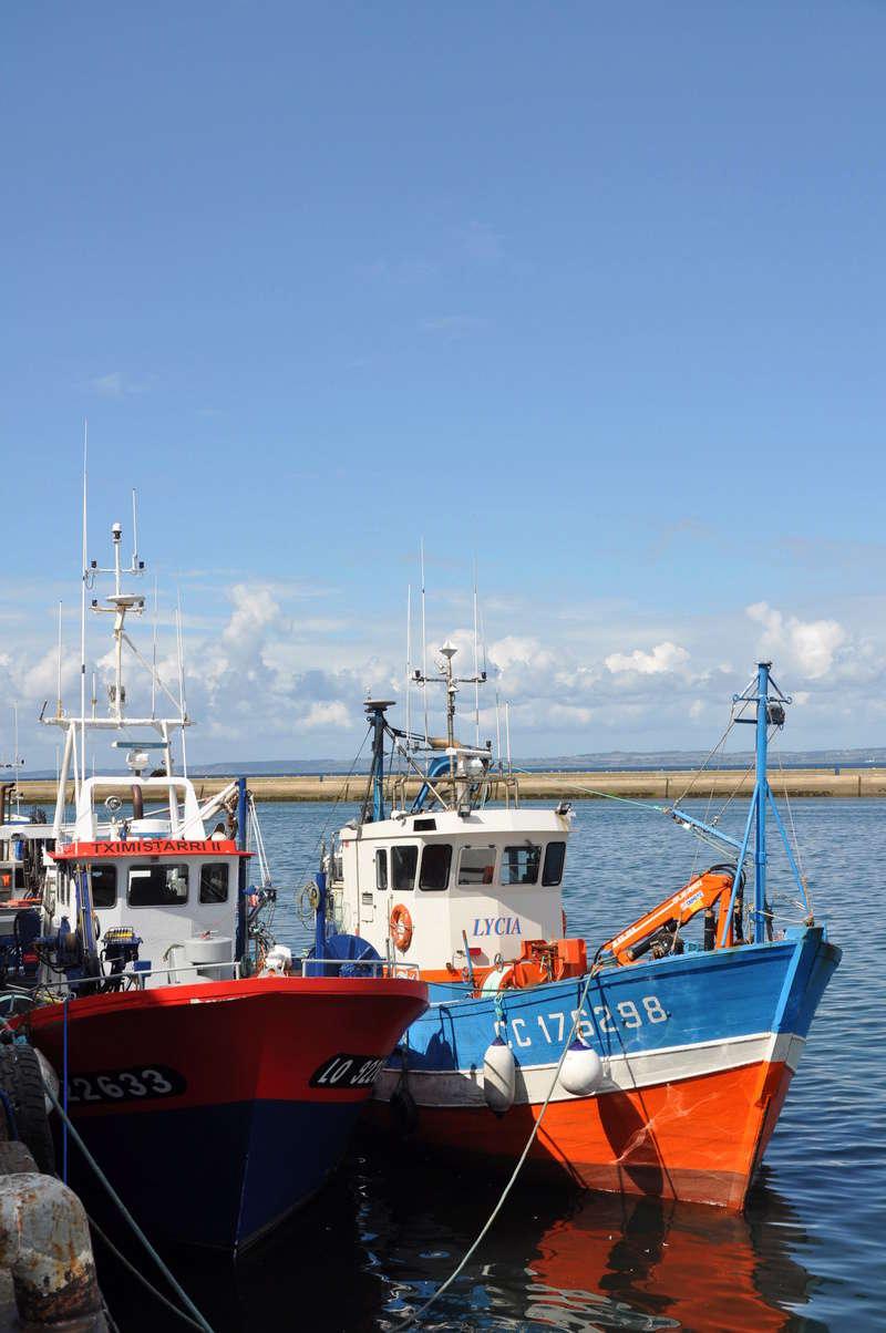[VIE DES PORTS] Quelques bateaux de pêche (sur nos côtes Françaises) - Page 36 90710