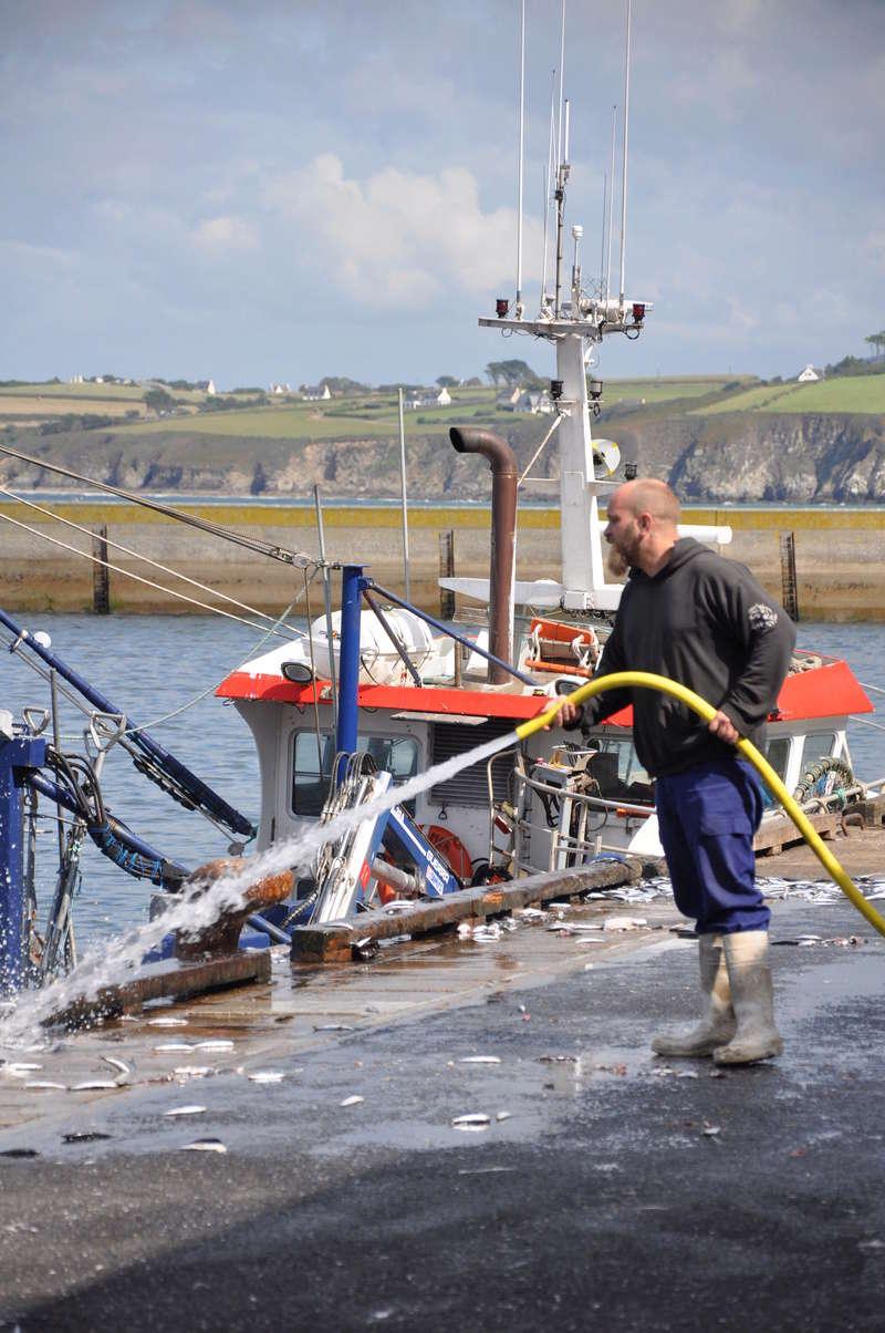 [VIE DES PORTS] Quelques bateaux de pêche (sur nos côtes Françaises) - Page 37 91310