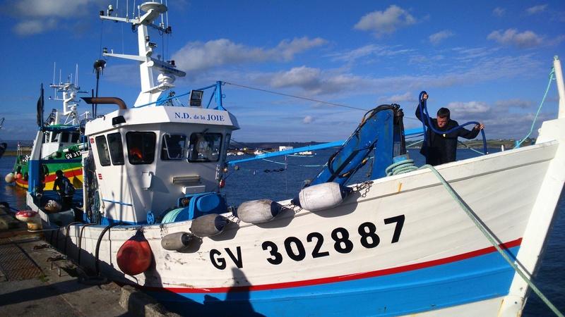 [VIE DES PORTS] Quelques bateaux de pêche (sur nos côtes Françaises) - Page 37 Dsc_0110