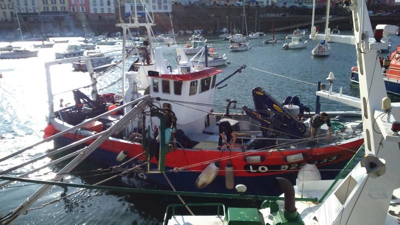 [VIE DES PORTS] Quelques bateaux de pêche (sur nos côtes Françaises) - Page 37 Dsc_0410
