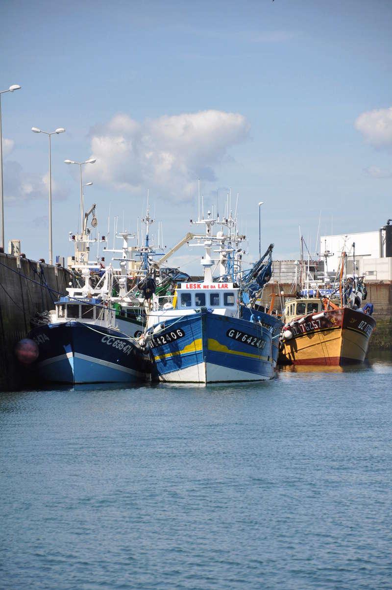 [VIE DES PORTS] Quelques bateaux de pêche (sur nos côtes Françaises) - Page 38 Ete_2019