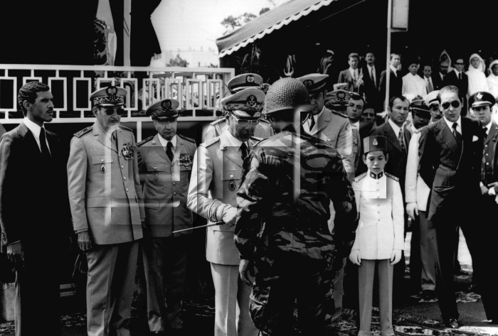 les FAR dans la Guerre d'octobre 1973 - Page 2 1973_310
