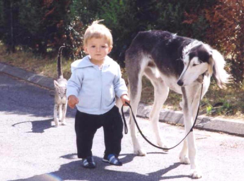 Enfants seuls avec le chien : à quel âge? 3_omar10