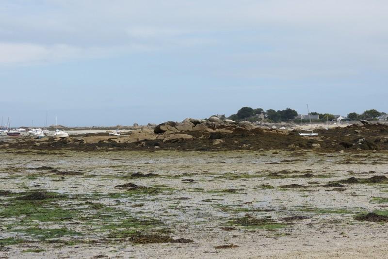 brigognan phare ,plage , Img_9617