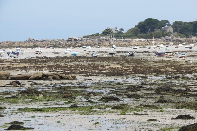 brigognan phare ,plage , Img_9621