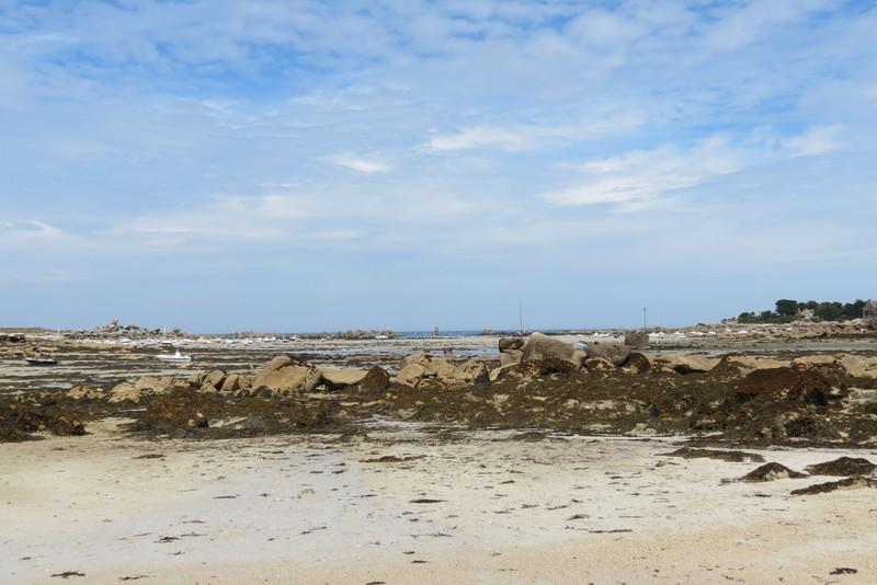 brigognan phare ,plage , Img_9622