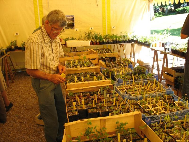 Foire aux plantules SAJA 30/05/09 - Page 2 Img_2912