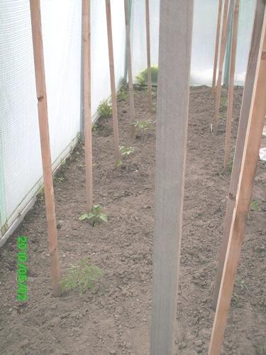 2011 le jardin de chacun 14_mai14